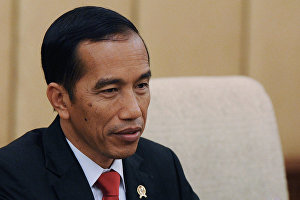 Indonesian president plans to attend ASEAN-Russia Summit